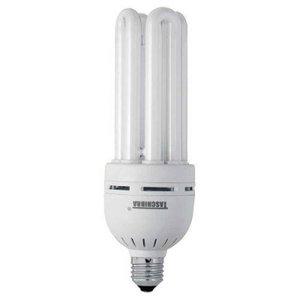 Lâmpada Fluorescente 40 Watts 127 Volts Taschibra