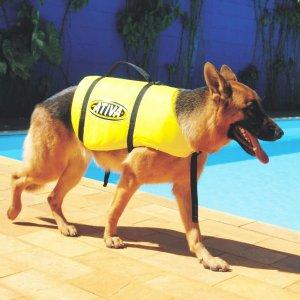 Colete Salva Vida Ativa Cachorro Pet Tamanho P - 5 A 9 Kg