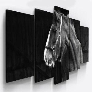 Quadros Decorativos Fazenda Cavalo Preto Branco