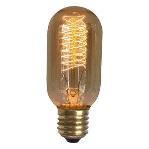 Lâmpada Retro Thomas Edison T45 127v
