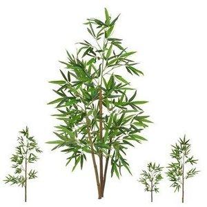 Árvore Bambu Permanente 1,20m Real Toque