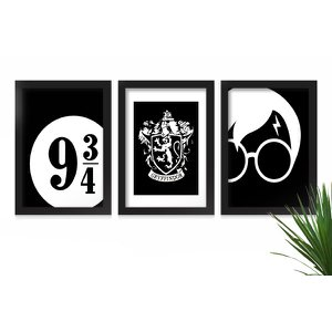 Kit 3 Quadros Decorativos C/ Moldura Geek Nerd Harry