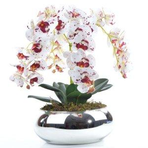 Arranjo com 4 Orquídeas Tigre Centro de Mesa Espelhado