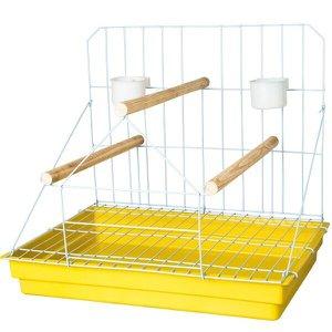 Poleiro Grande para Papagaio Amarela
