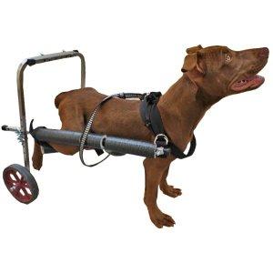Cadeira De 2 Rodas Cachorro Cão Médio Porte De 8 A 15 Kg