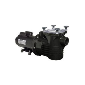 Bomba para Piscina Dancor PF-22 3 CV Monofásico Motor WEG 110/220V