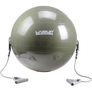 Bola Suíça para Pilates 65 CM com Extensores LIVEUP LS3227