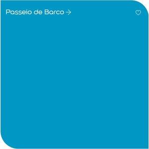Tinta Acrílica Coral Premium Decora 900ml Azul - Passeio de Barco