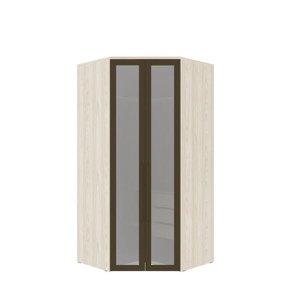 Armário Modulado Evolution Canto Closet 2 portas com gavetas cabideiro e calceiro Com Espelho - Vani