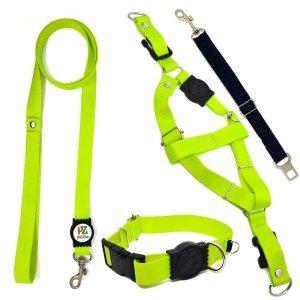 Conjunto coleira, peitoral, guia e cinto para cachorro - Tamanho Médio - Modelo Neon
