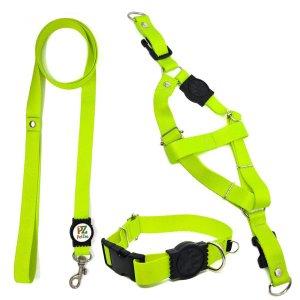 Conjunto coleira, peitoral e guia para cachorro - Tamanho Médio - Modelo Neon