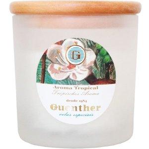 Vela perfumada Guenther em vidro Jardim Tropical 150 g