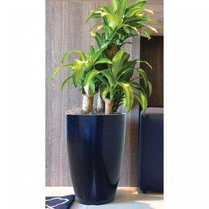 Vaso Decorativo em Vibra de Vidro Cônico Moderno 55cm Japi
